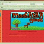 website-2008a