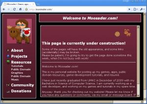 website-2010