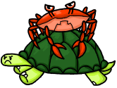 Such a cute crab on a turtle!